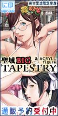 聖域BIGタペストリー 聖少女コレクション&アクリルフィギュア